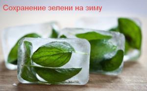 Сохранение зелени